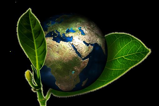 Pourquoi votre association ou fondation doit-elle Intégrer les facteurs ESG dans son processus d'investissement?